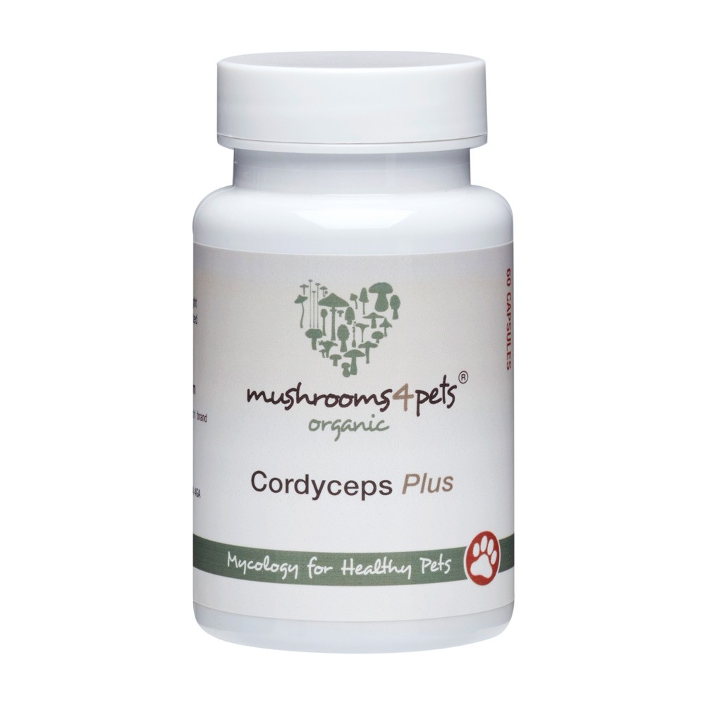 Mushrooms 4 Pets Organic Cordyceps Plus