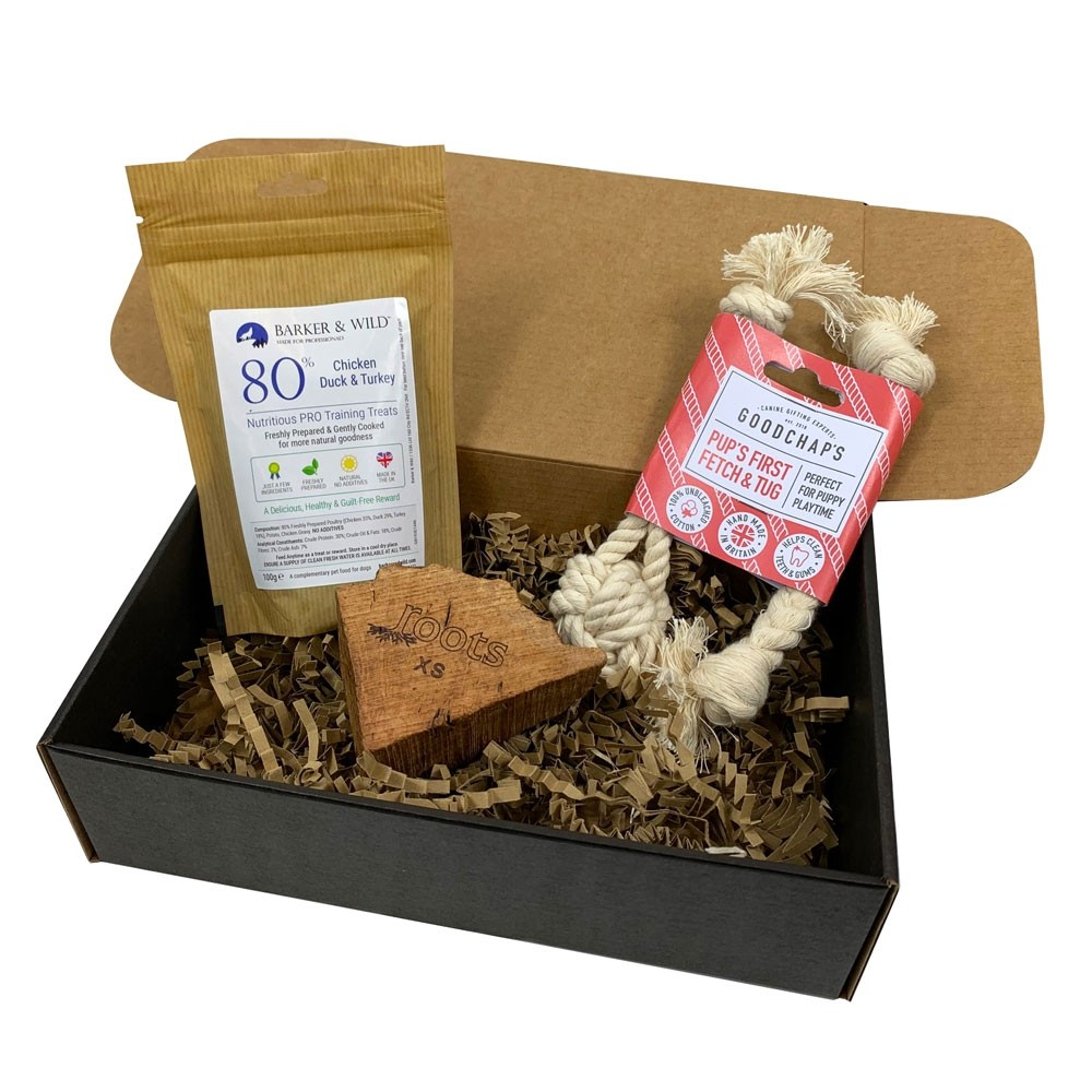Paws Puppy Dog Gift Box