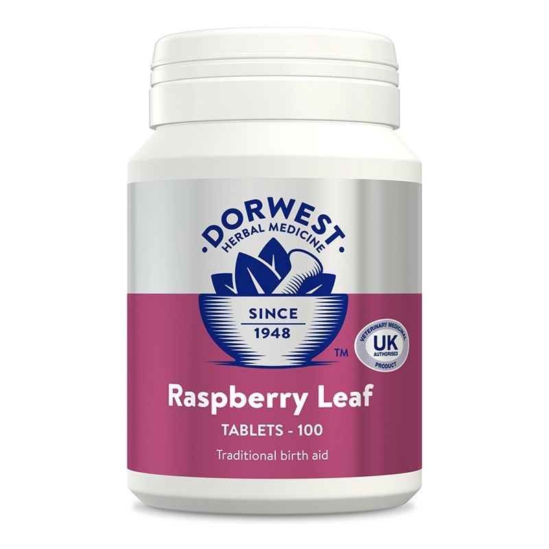 Dorwest Raspberry Leaf Tablets for Dogs and Cats